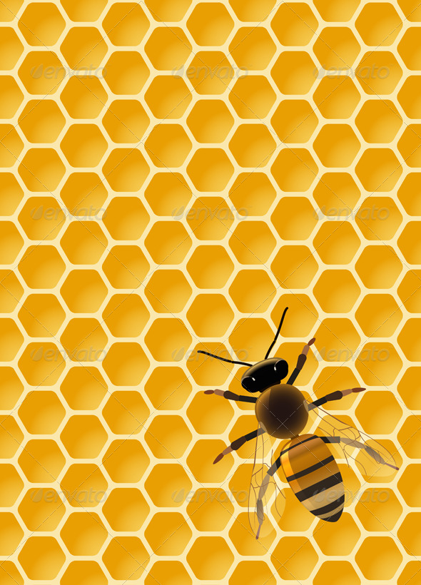 GraphicRiver Bee 5682356