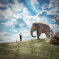 Girl Walking Elephant and Animals in Nature - PhotoDune Item for Sale