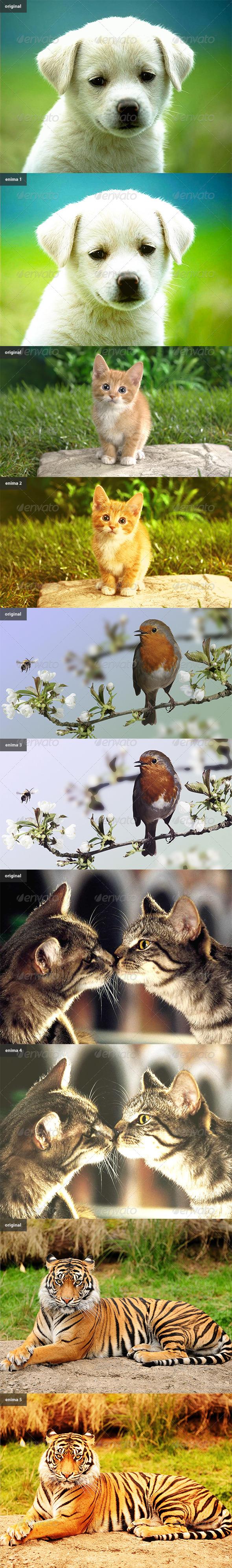 GraphicRiver Enima Photoshop actions 5711518