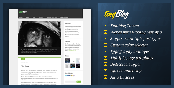 ThemeForest tinyBlog WordPress Tumblog Theme 238280
