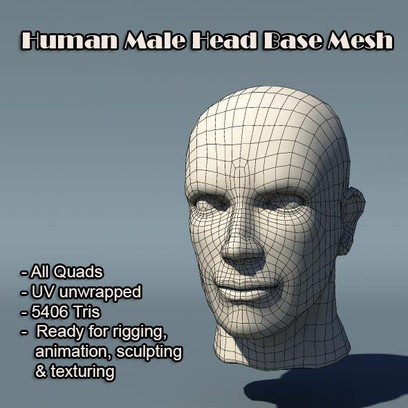 3DOcean Human Male Head Base Mesh 5737448