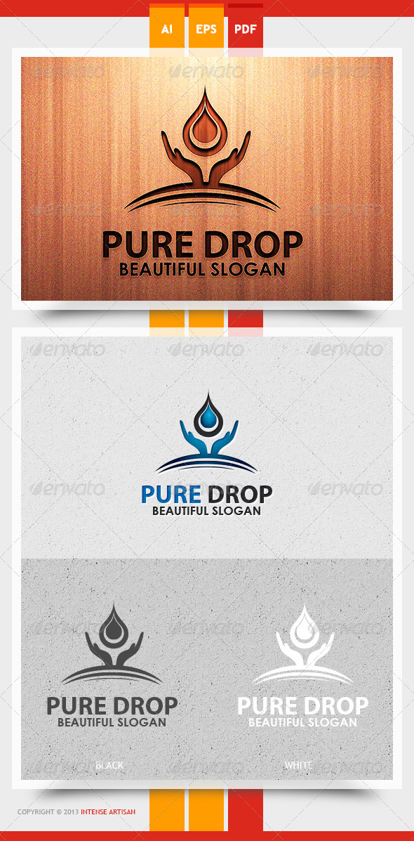 GraphicRiver Pure Drop Logo Template 5738429