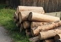 Wooden Logs Near a Barn - PhotoDune Item for Sale
