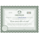 Detailed Guilloche Certificate - GraphicRiver Item for Sale
