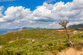 Typical landscape in Aragon, Spain - PhotoDune Item for Sale