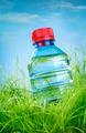 Water bottle on the grass - PhotoDune Item for Sale