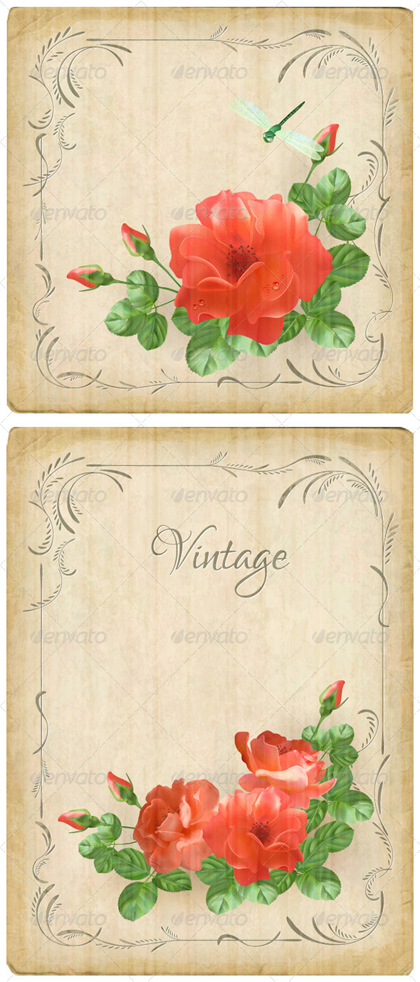 GraphicRiver Vintage Flower Dragonfly Retro Card 5793792
