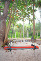 Swings and palm on the sand tropical beach. - PhotoDune Item for Sale