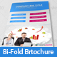 Corporate Bi-Fold Brochure V-09 - GraphicRiver Item for Sale