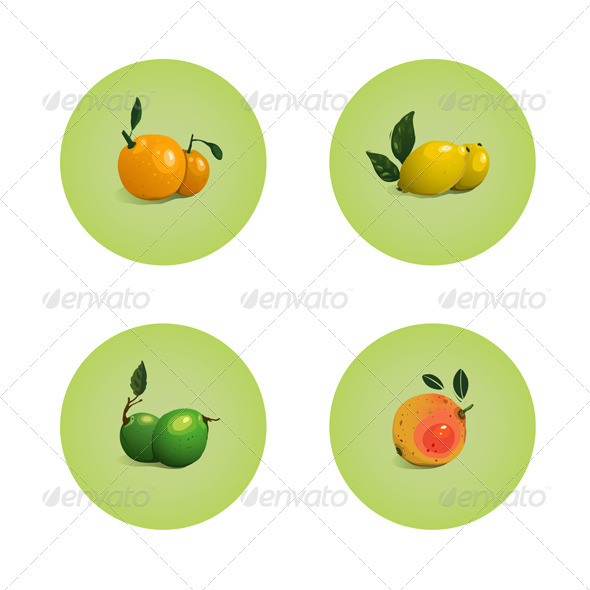 GraphicRiver Orange Grapefruit Lime Lemon Citrus Fruits Set 5812865