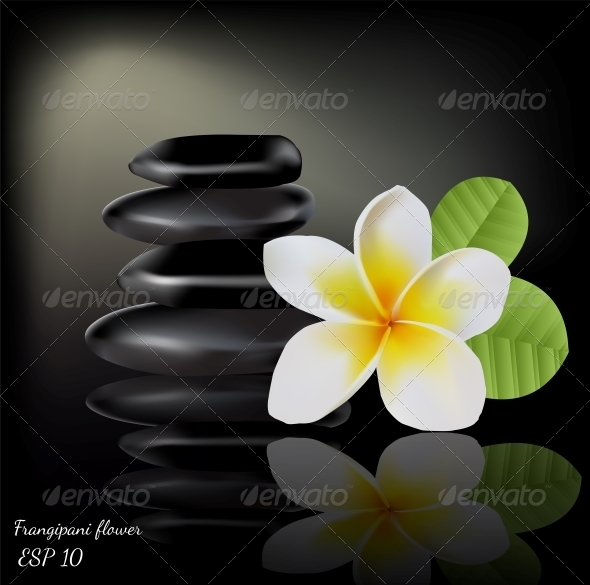GraphicRiver Flower Frangipani on Dark Background 5817209