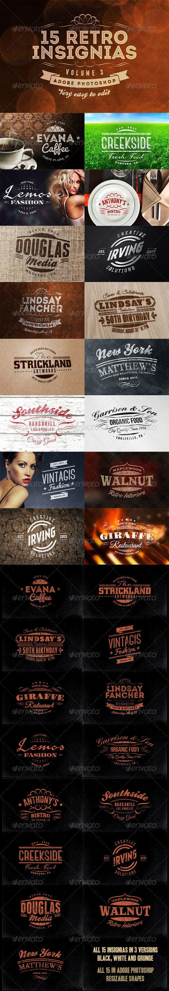 GraphicRiver 15 Retro Insignias Badges v.3 5774623