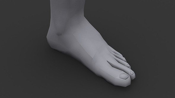 3DOcean Human Male Foot Low Poly 5831346