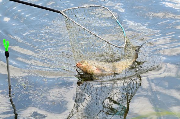 рыбалка перекатом сетью