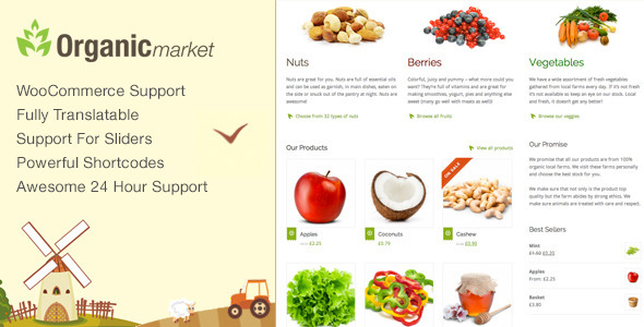 Organic Market wordpress theme download