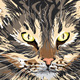 Illustrated cat - GraphicRiver Item for Sale