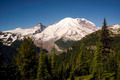 Trail High on Burroughs Mountain Cascade Range Mt. Rainier Background - PhotoDune Item for Sale