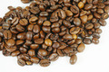 coffee seed - PhotoDune Item for Sale