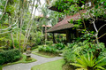 tropical garden in ubud bali indonesia - PhotoDune Item for Sale