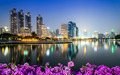 Bangkok city downtown at night with Bougainvillea flower foregro - PhotoDune Item for Sale
