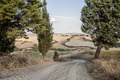 Tuscan Roads - PhotoDune Item for Sale