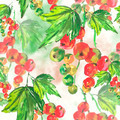 Seamless watercolor background with red currant - PhotoDune Item for Sale