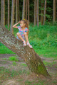 little girl climbed on tree - PhotoDune Item for Sale