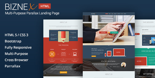 ThemeForest BizNex Multi-Purpose Parallax Landing Page 5883450