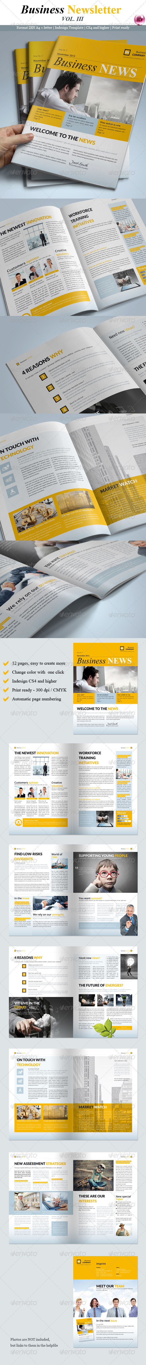 GraphicRiver Business Newsletter Vol III 5893352