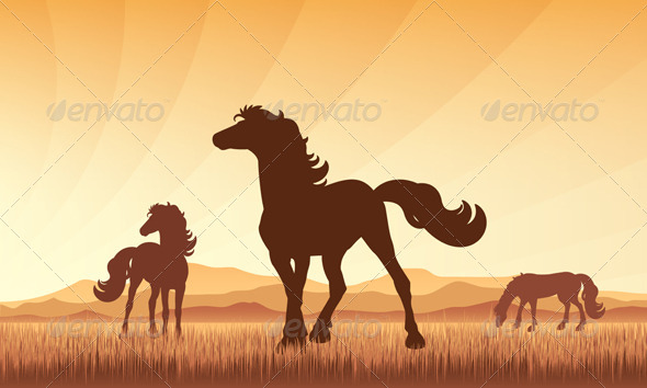 GraphicRiver Horses on Field with Sunset Background 5896566