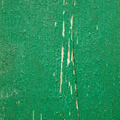 Green Wooden Texture - PhotoDune Item for Sale
