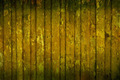 Moldy wooden house wall - PhotoDune Item for Sale