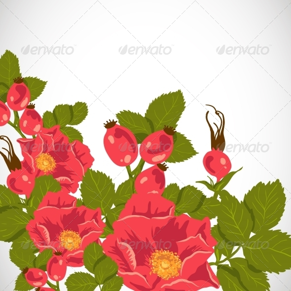 GraphicRiver Floral Background with Wild Rose 5922996