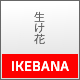 Ikebana - Masonry WordPress Portfolio Theme - ThemeForest Item for Sale