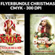 Flyer Template Christmas Bundle - GraphicRiver Item for Sale