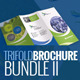 Trifold Corporate Brochure Bundle II - GraphicRiver Item for Sale