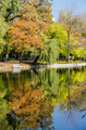 Autumn Colors Reflections - PhotoDune Item for Sale