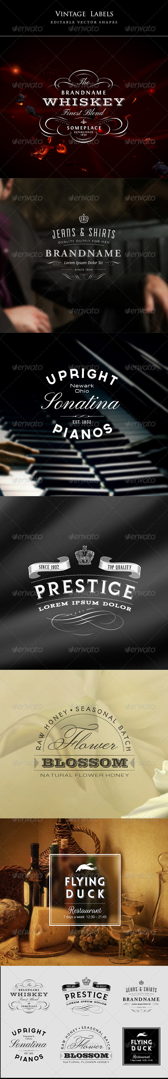 GraphicRiver 6 Vintage Labels 5968732