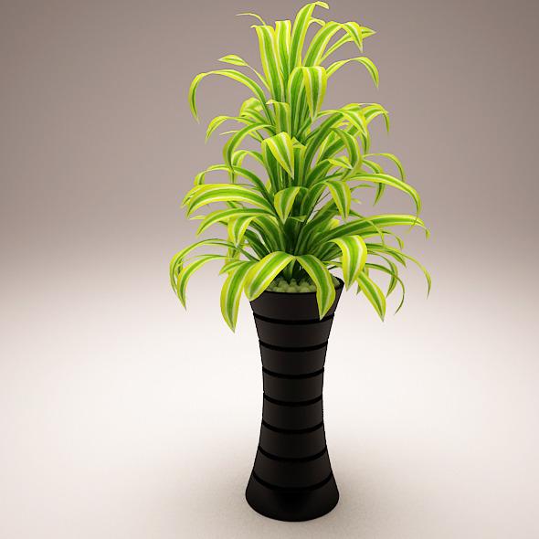 3DOcean Plant Model C 5970886
