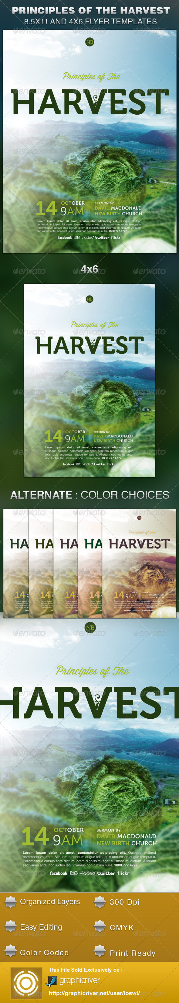 GraphicRiver Principles of the Harvest Church Flyer Template 5979900