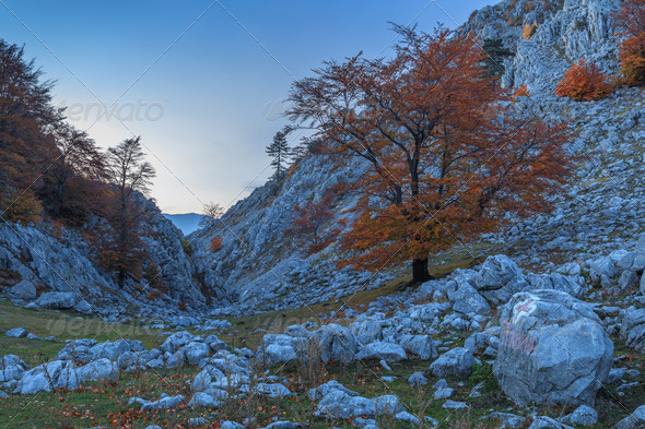 mountain landscape - Stock Photo - Images
