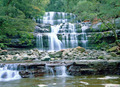 Liffey falls - PhotoDune Item for Sale