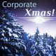 Holiday Corporate Greetings - VideoHive Item for Sale