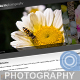 Kookaburra Photography - ThemeForest Item for Sale