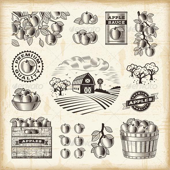 GraphicRiver Vintage Apple Harvest Set 5988963