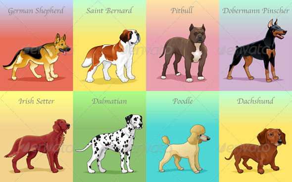 GraphicRiver Groups of Dogs 5991562