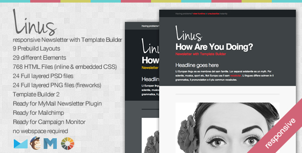 Linus Responsive Newsletter With Template Builder