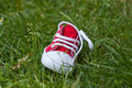 kids shoe on grass - PhotoDune Item for Sale