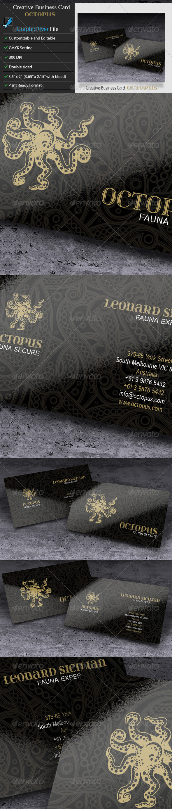 GraphicRiver Creative Business Card Octopus 6027350