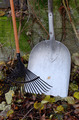autumn still life, rake, shovel, and leaves - PhotoDune Item for Sale
